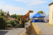 horse-festival