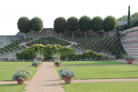 Les jardins du Chateau d'Amboise