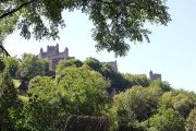 castle-behind-trees