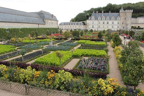 Potager in the gardens of Villandry Castle