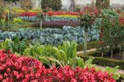 gardens-17