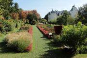 gardens-grasses