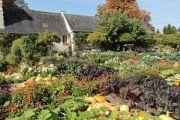 gardens-potager