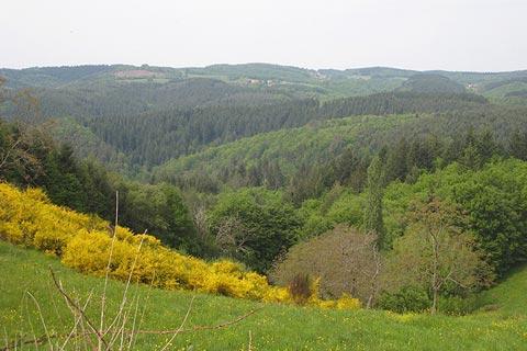 Chateldon paysage