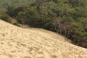 dune-de-pyla-6