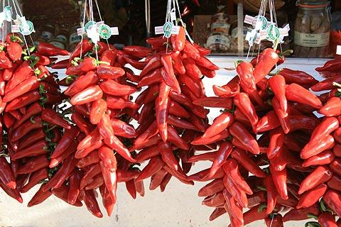 chillies drying in Espelette