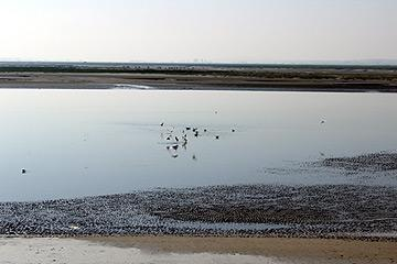 Bay of the Somme