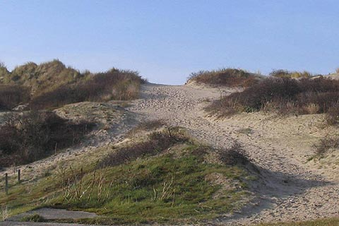 Dunes behind the beach at Fort-Mahon-Plage