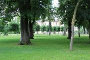 chateau-parkland