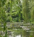 giverny-gardens-bridge