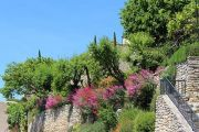 colourful-gardens