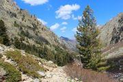 back-along-gorges