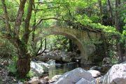 gorges-bridge