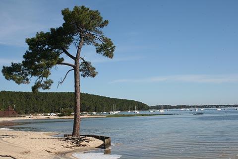 port du lac de Hourtin