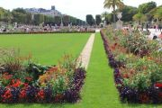 gardens-and-flowers