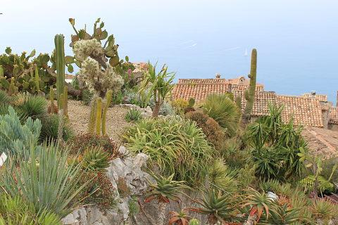 The Exotic Garden Of Eze France Set In The Stunning Village Of Eze
