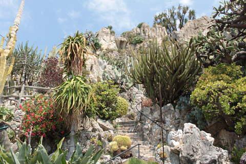 le jardin exotique de monaco un jardin incroyable avec une vue imprenable. Black Bedroom Furniture Sets. Home Design Ideas