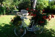 flowering-bike