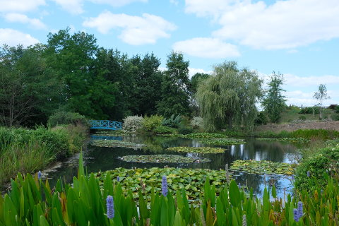 Pond of the water gardens of Carsac-Aillac