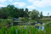 large-pond
