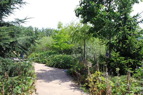 Franche Comte, garden 2
