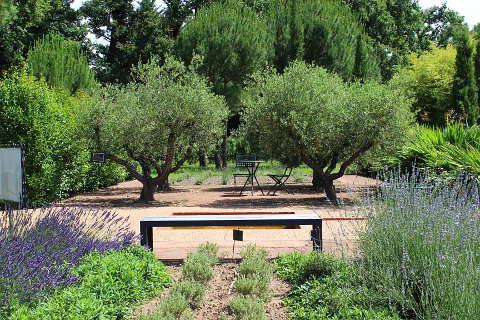 Jardins de Colette Provence garden