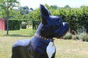 colette-dog