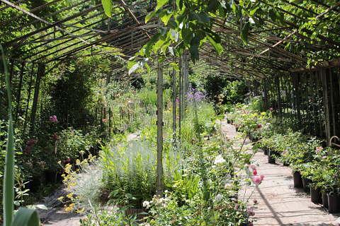 Les Jardins De Roquelin Meung Sur Loire