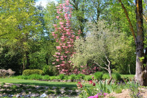 the jardin des martels is a superb garden to visit in the tarn