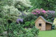 garden-shed