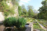 garden-(5)