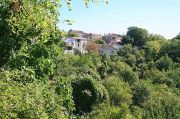 village-view-trees