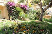 public-garden