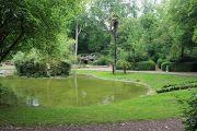 jardin-dumaine-bassin