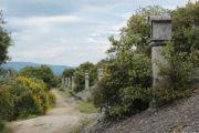 chapel-approach-path-3
