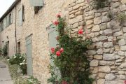 stone-houses-and-roses