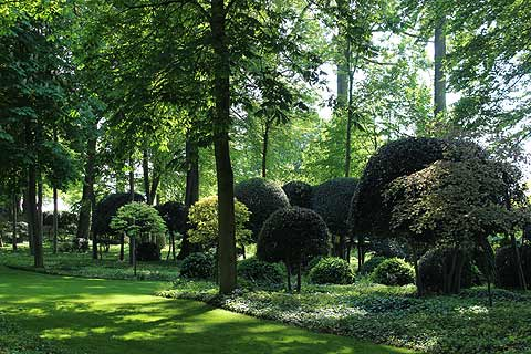Topiary bushes in the Jardins de Maizicourt