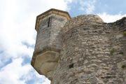 castle-detail