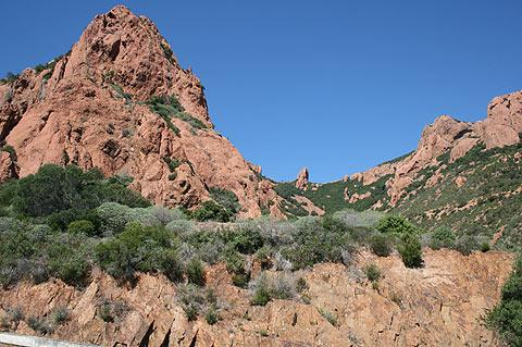 scenery in massif d'esterel