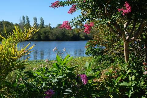 Promenade fleurie near Mimizan