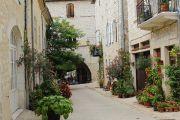 flowers-in-medieval-street