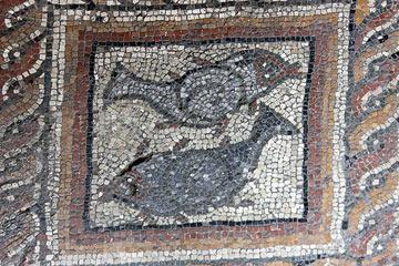 mosaïque de poisson  dans Montcaret villa bains