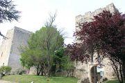 chateau-des-adhemar-(5)
