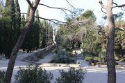 botanic-garden-(2)