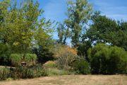 chateau-garden