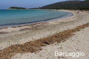 barcaggio-beach
