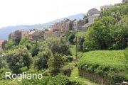 rogliano-hill-with-village