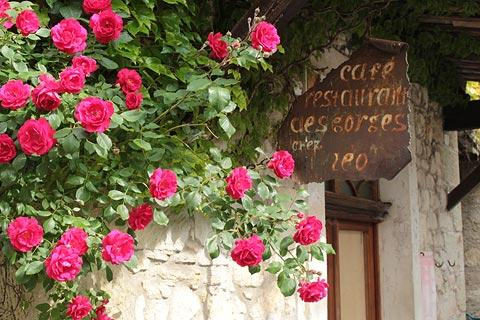 Flower covered cafe in Oppedette village
