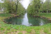 source-loiret-river