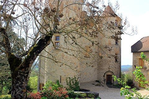 Parisot castle